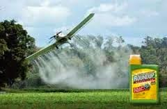 roundup2baerial2bspraying